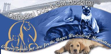 Cathedral Dog &amp; Cat Veterinary Hospital