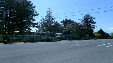 Tall Firs Mobile Home Rv Pk
