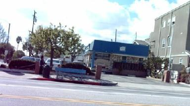 Torrance Autohaus - Homestead Business Directory