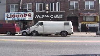 Animal Clinic Of Bensonhurst