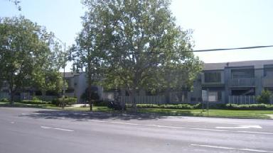 Pinewood Apartments - Homestead Business Directory