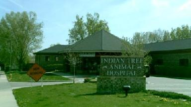 Indian Tree Animal Hospital - Homestead Business Directory