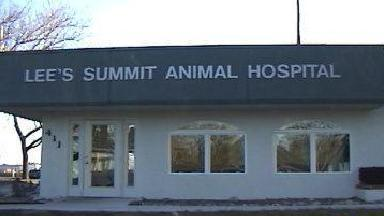 Lee's Summit Animal Hospital