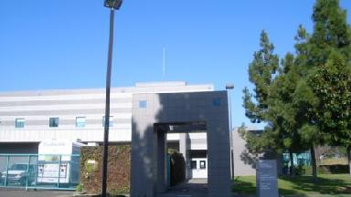 Alameda County Library - Homestead Business Directory