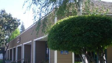 Milpitas Physical Therapy - Homestead Business Directory