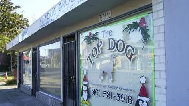Top Dog - Homestead Business Directory