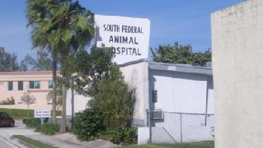 South Federal Animal Hospital - Homestead Business Directory