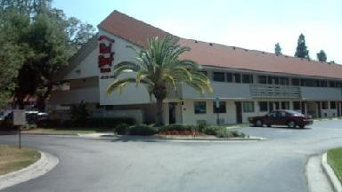 Red Roof Inn-tampa Fairgrounds - Homestead Business Directory