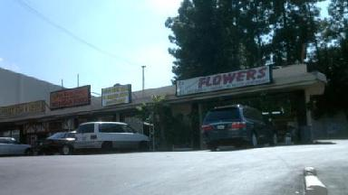 Dave's Flowerland - Homestead Business Directory