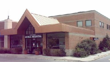 River Forest Animal Hospital - Homestead Business Directory