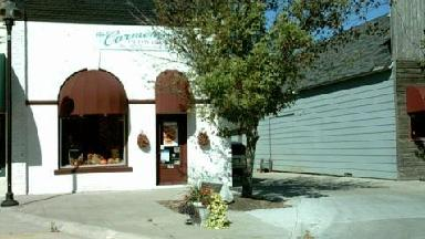 Carmen's Flowers & Gifts - Homestead Business Directory