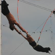 Trapeze School New York - Homestead Business Directory