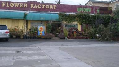 Uptown Nursery - Homestead Business Directory