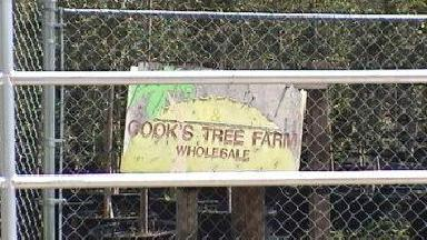 Cook's Discount Tree Farm - Homestead Business Directory