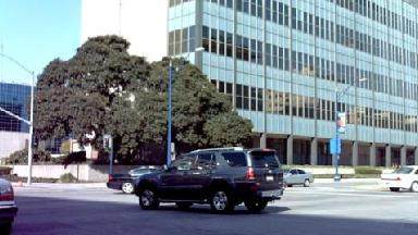 Long Beach Law Library - Homestead Business Directory