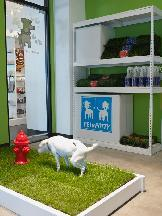 Pussy & Pooch Pethouse-pawbar - Homestead Business Directory