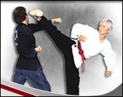 Karate Mendes Tang Soo Do - Homestead Business Directory