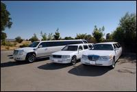 Coastal Breeze Limousine Llc