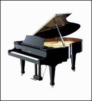 Southern Keyboards Pianos - Homestead Business Directory