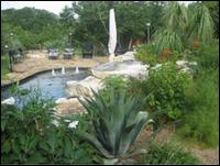 Agave Nusery & Landscape - Homestead Business Directory