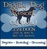 Diggity Dog Resort