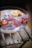 Le Mani Day Spa - Homestead Business Directory