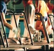 Lifestyle Family Fitness - Homestead Business Directory