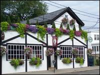 Paddy O's - Homestead Business Directory