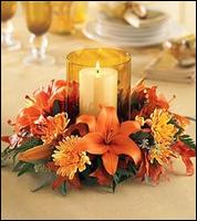 Orchids & Ivy - Homestead Business Directory