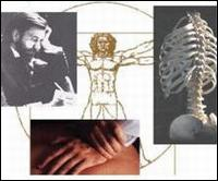 Acupuncture At Chicago Spine
