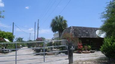 Apopka's Plant Outlet - Homestead Business Directory