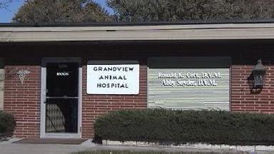 Grandview Animal Hospital - Homestead Business Directory