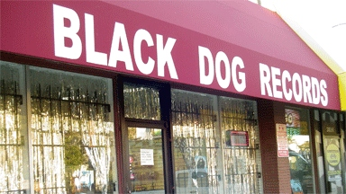 Black Dog Records &amp; Cds