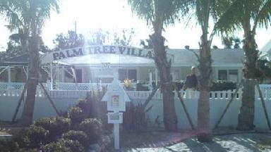 Palm Tree Villas - Homestead Business Directory