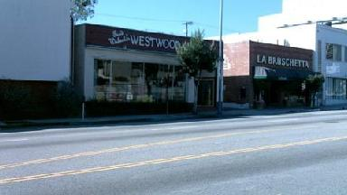 Westwood Music Fred Walecki's - Homestead Business Directory
