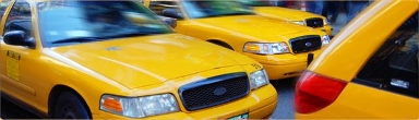 Yellow Taxi Cab Mountain View - Homestead Business Directory