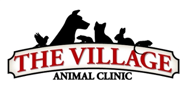 McCarthy, Mike, Dvm - The Village Animal Clinic - Voorheesville, NY