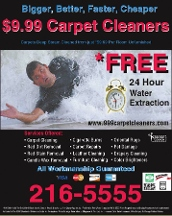 $9.99 Carpet Cleaners - Homestead Business Directory