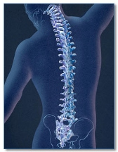 New-Life Chiropractic INC - Hilliard, OH