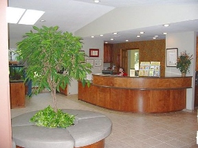 All Pets Animal Hospital - Bentonville, AR