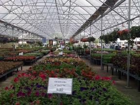 Cornelius Nurseries Inc - Houston, TX