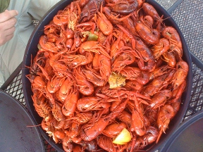 River Pond Seafood - Homestead Business Directory