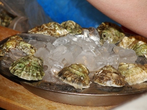 B & G Oysters Ltd. - Boston, MA