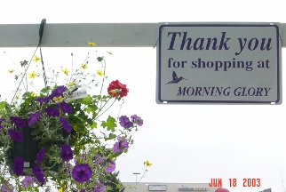Morning Glory Garden Shop - Homestead Business Directory