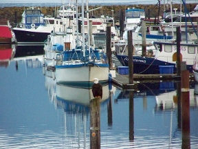 Dockside Grill - Homestead Business Directory