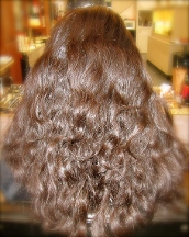 Hair by Cesare, Inc. - Pasadena, CA