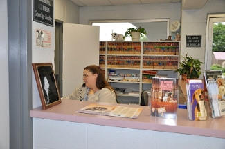 Madison Veterinary Clinic - Madison, TN