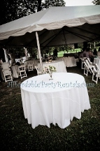 Affordable Party Rentals - Collierville, TN
