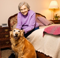 Senior Helpers - Lake Saint Louis, MO