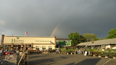 Haines Farm & Garden Supply - Riverton, NJ